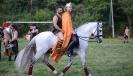 Festa dei Barbari 2014 - XXX° Anno-27