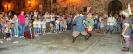 Festa dei Barbari 2014 - XXX° Anno-42